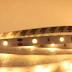 Cấu tạo đèn led dây 12V