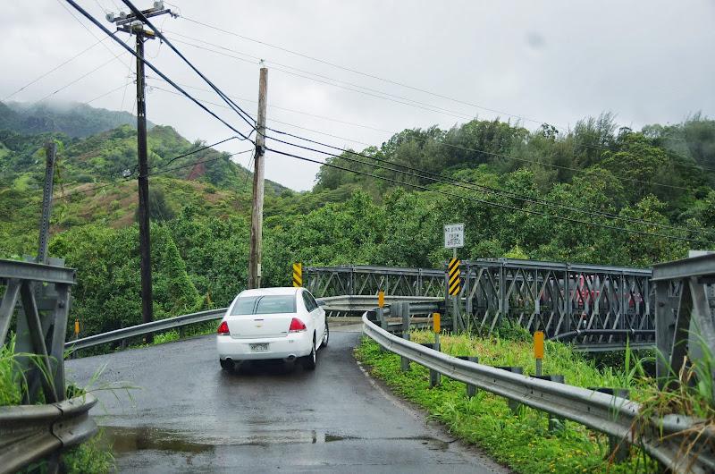 06-25-13 Annini Reef and Kauai North Shore - IMGP9270.JPG