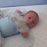 Meet Marshall! - IMG_0409.JPG