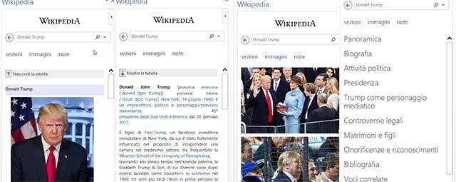 wikipedia-addin-ricerca