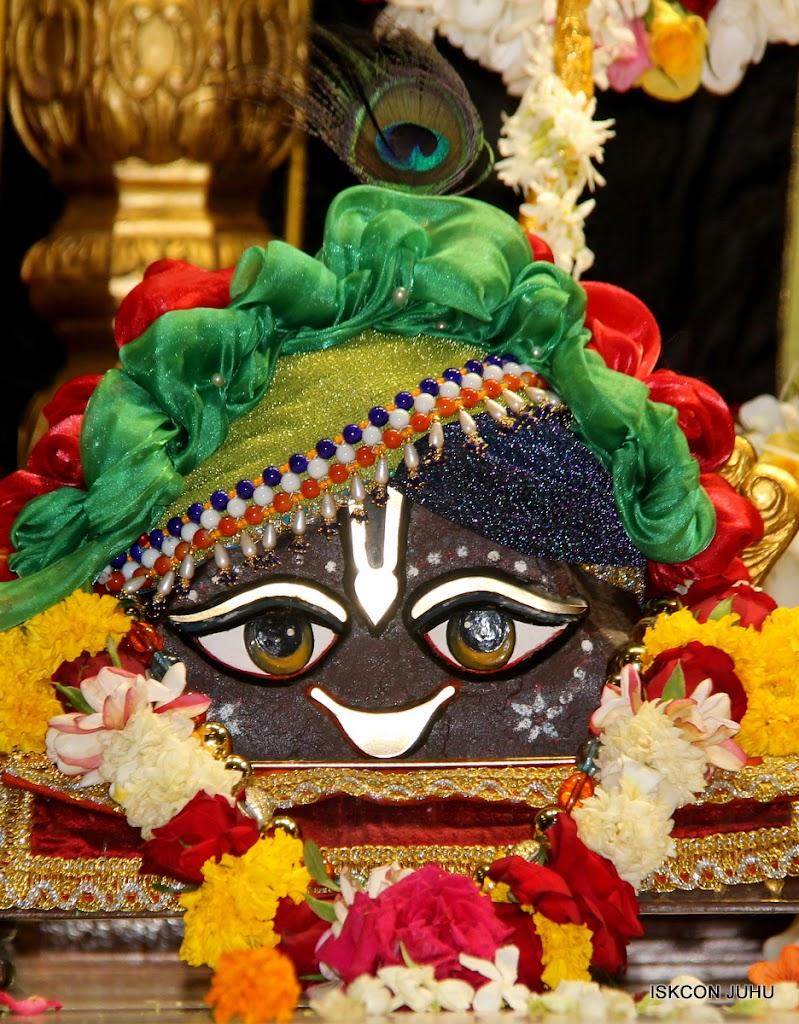 ISKCON Juhu Sringar Deity Darshan on 4th June 2016 (9)