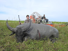 Jack Kolar, USA, took this management buffalo with my 460 Weatherby, Carmor Plains, at the end of the wet season. Guide Matt Chin behind in the airboat. These bulls are only accessible with the help of this machine.