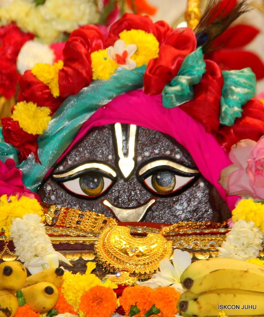 ISKCON Juhu Sringar Deity Darshan on 28th June 2016 (37)