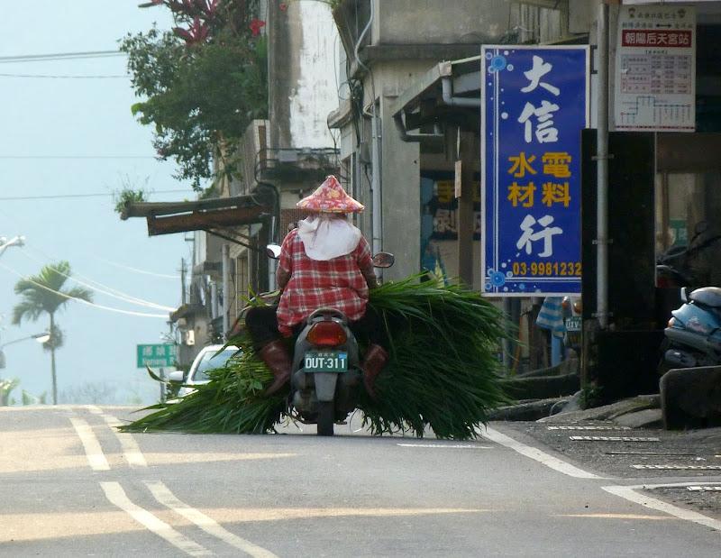 TAIWAN. Weekend Randonnée, Taipei à  Hehuanshan en passant par Puli, retour par les gorges de Taroko - P1290076.JPG