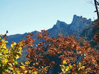 Jesen je već dugo na Velebitu