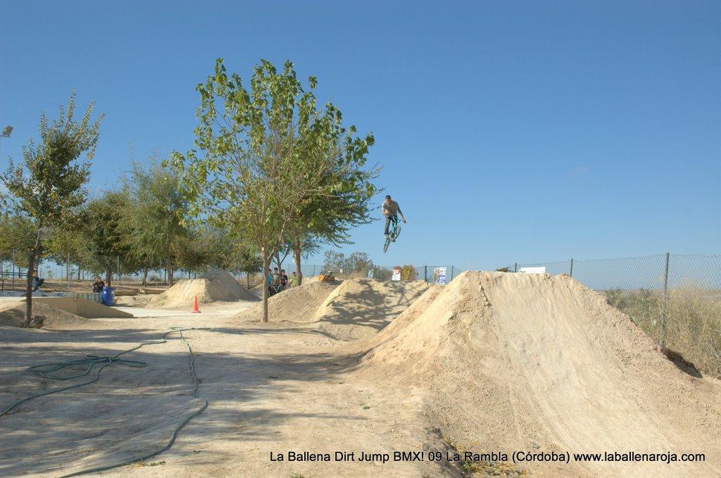 Ballena Dirt Jump BMX 2009 - BMX_09_0027.jpg