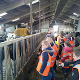 Welpen - Naar de boerderij - 20120331_110852.jpg