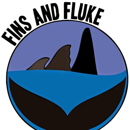 Fins and Fluke shared this via