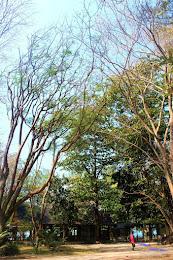 pulau harapan, 29-30 agustus 2015 Canon 154