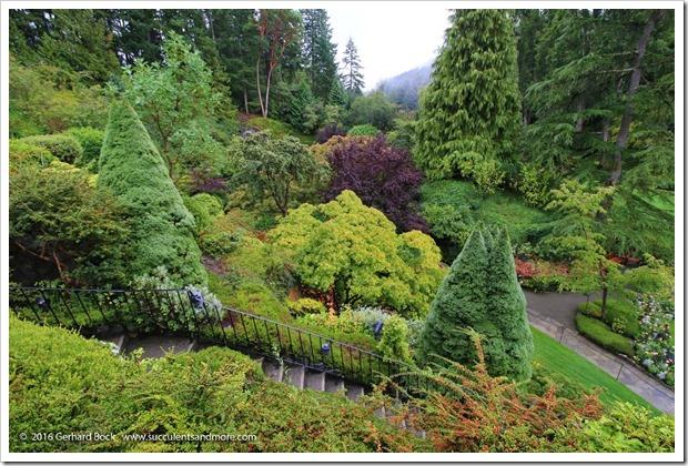 160906_Butchart_Gardens_0050