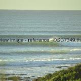 _DSC7349.thumb.jpg