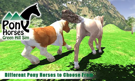 Pony-Horses-Green-Hill-Sim-3D 1