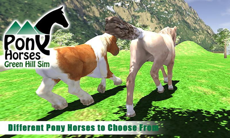Pony-Horses-Green-Hill-Sim-3D 13