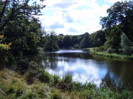 blenheim palace lake 3