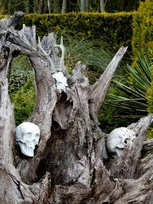 Hanworth skulls