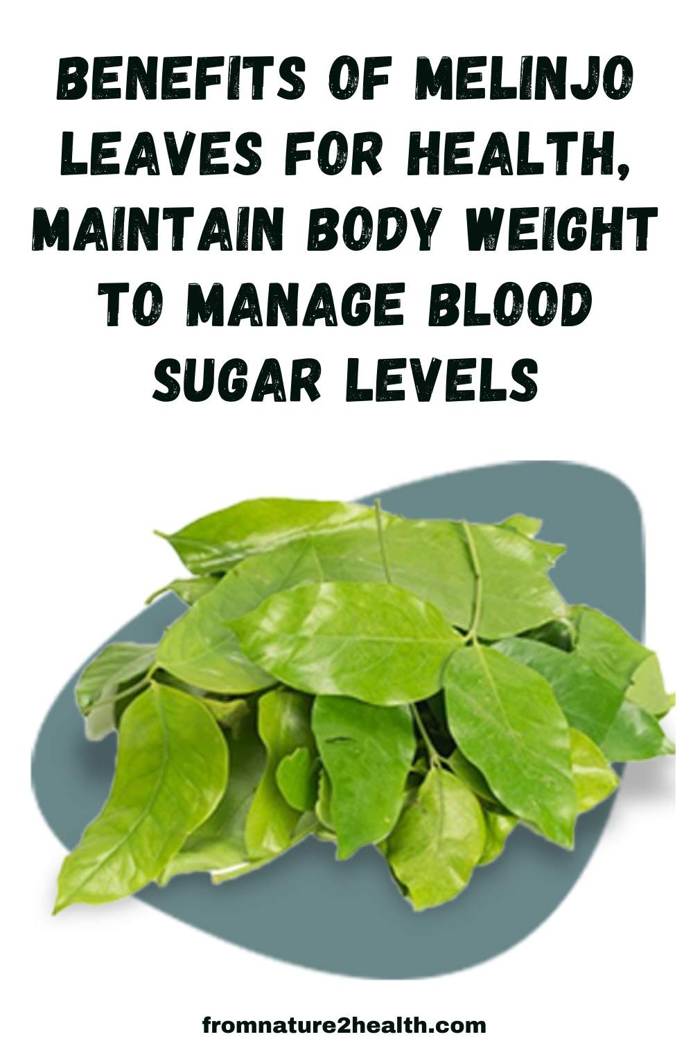 Benefits of Melinjo Leaves for Health, Maintain Body Weight to Manage Blood Sugar Levels