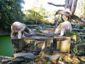 Photo: Man beaeugt sich gegenseitig ;-)