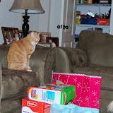Christmas 2012 - 115_4811.JPG