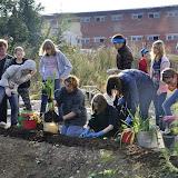 Высаживание многолетников у тропы Гайдара-Пушкарская