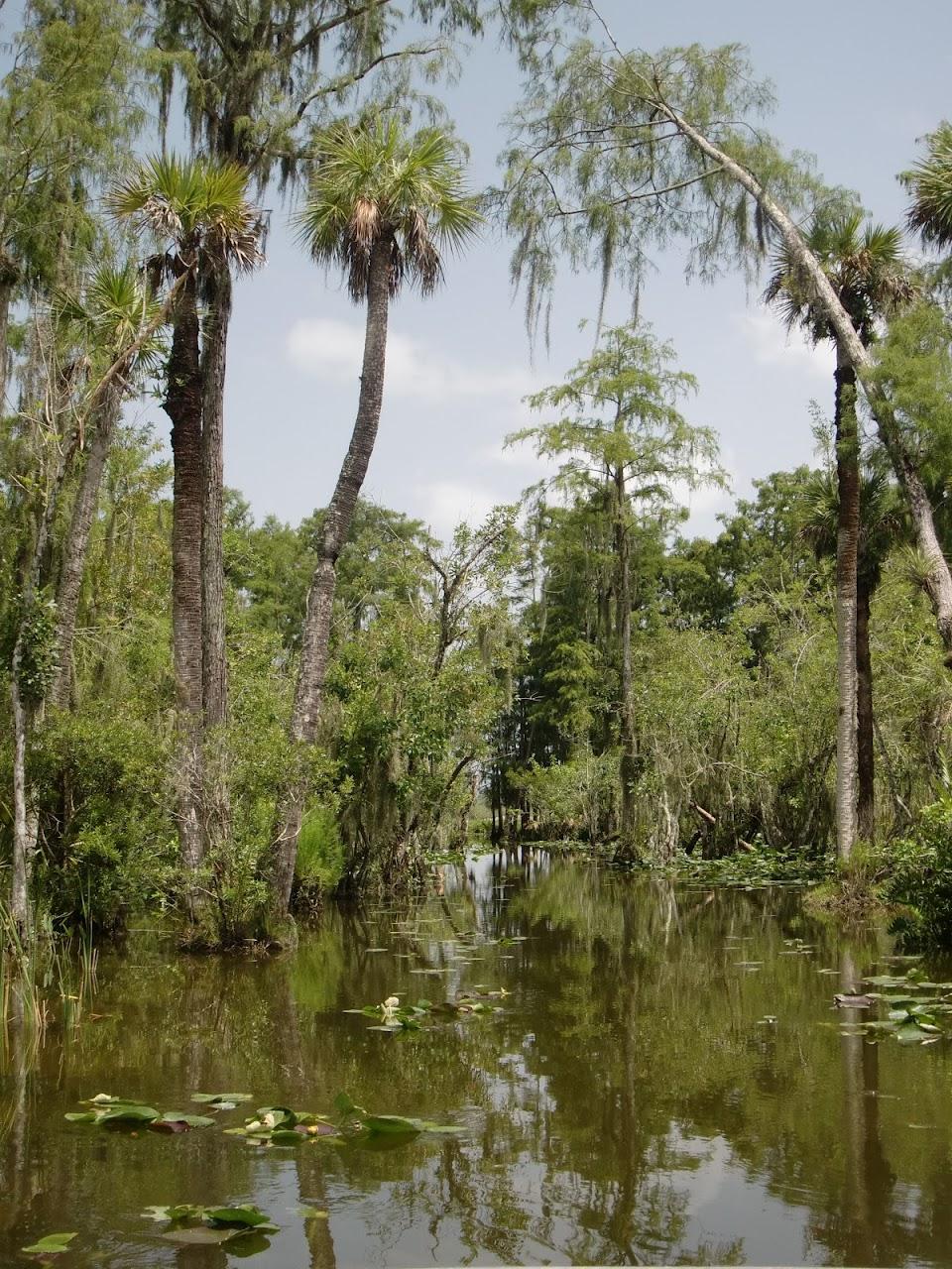 Seabase 2012 - 2012%7E07%7E25 41 Swamp 14.jpg