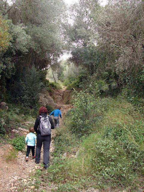 Barranco El Boixar