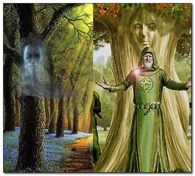 Дуб, ромашка (пупавка), хмель.., какие ещё растения могут быть посредниками между богами и людьми?