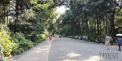 travelling ke meiji jingu shrine tokyo
