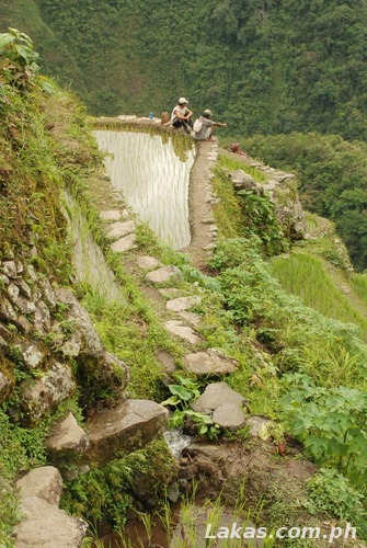 Farmers resting on top of a Rice Terrace in Batad