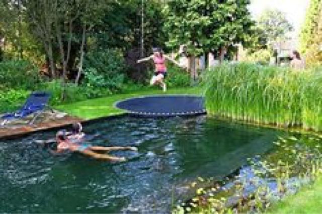 ALBA PISCINAS.COM: Piscina natural integrada en un jardín. Una ...