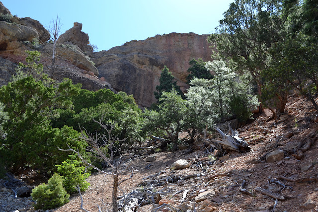 loose shale area