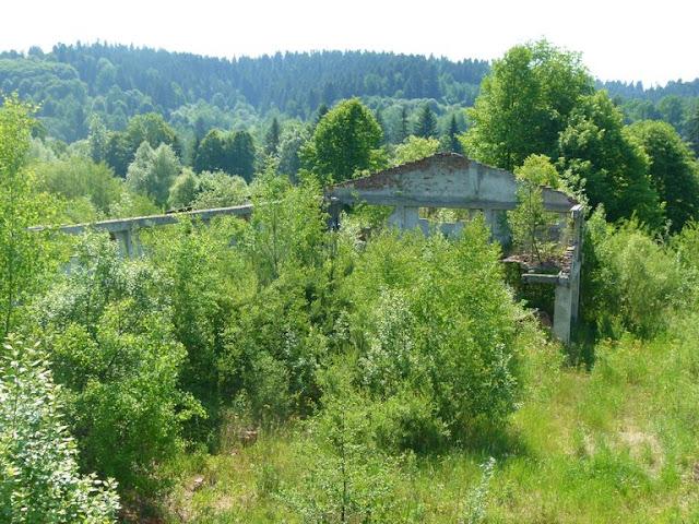 Obóz Ustrzyki 2015 - P1130748_1.JPG