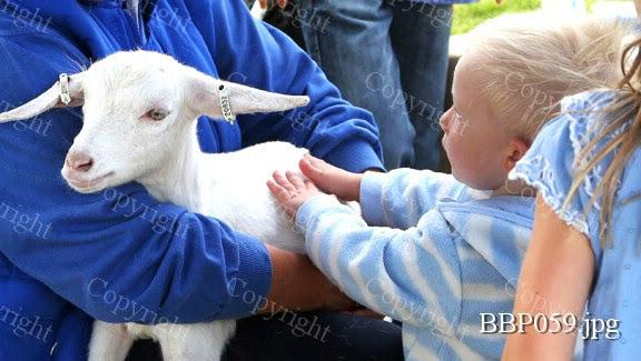 THE CHILDRENS ADVENTURE FARM TRUST - BBP059.jpg