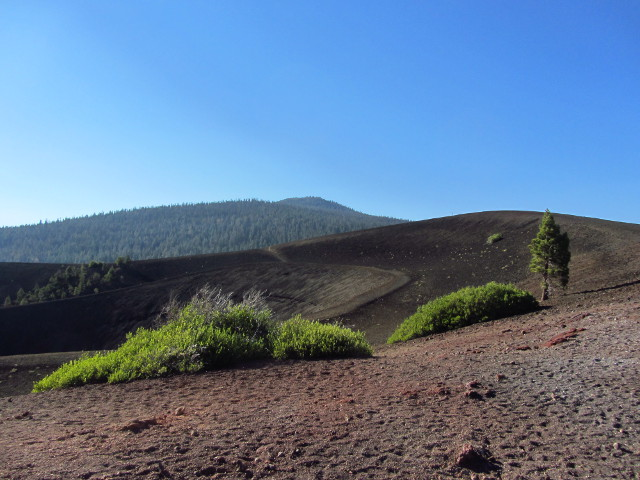 high point of Cinder Cone and Prospect Peak