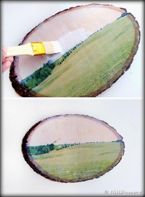 [Artesanato+-+Transfer+em+madeira-05%5B22%5D]