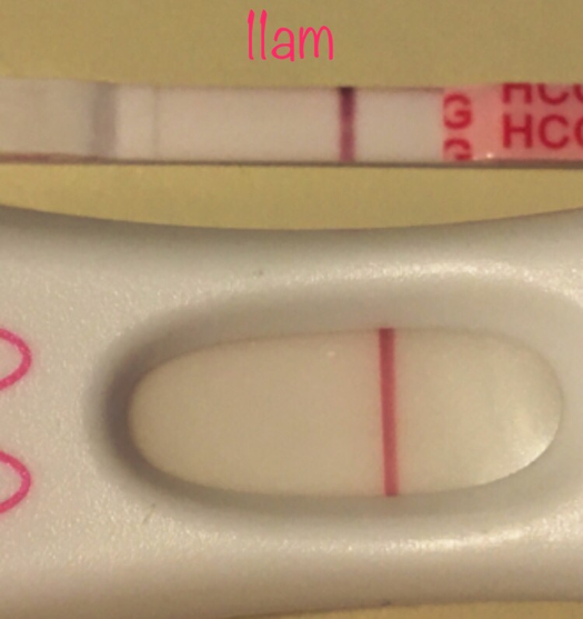 Cycle #7 ~ 11 DPO