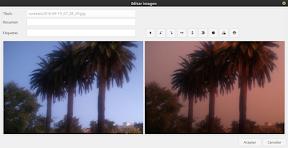 Efectos Instagram en Google Fotos de la mano de Picapy para Ubuntu. Otro ejemplo.