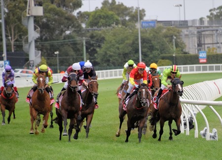 oakleigh plate_finish 3