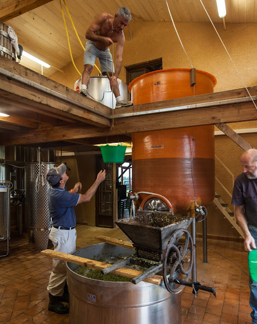 2013 vendanges du chardonnay - 2013%2B09%2B28%2BGuimbelot%2Bvendanges%2Bdu%2BChardonnay%2B141.jpg