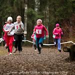 2014.04.12 Tartu Parkmetsa jooks 3 - AS20140412TPM3_105S.JPG