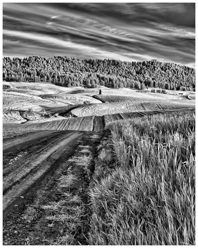"""Lonesome Road"" by Steve Bailey 3 Digital General ""A"""
