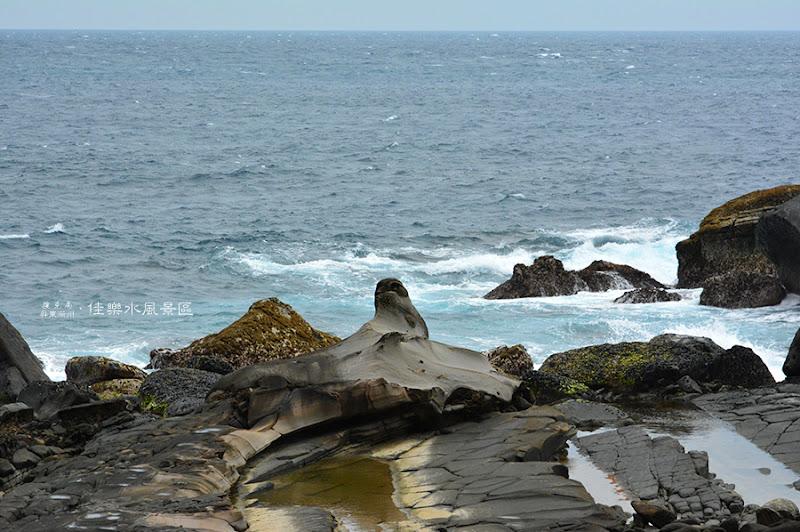 佳樂水風景區海豹石