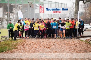 november run bistrita.jpg