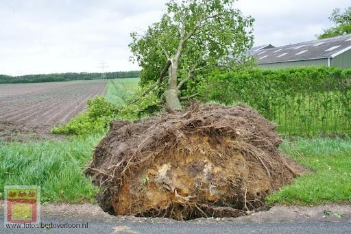 Noodweer zorgt voor ravage in Overloon 10-05-2012 (50).JPG