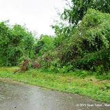 05-19-13 Oklahoma Storm Chase - IMGP6756.JPG