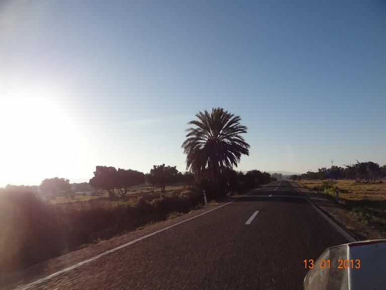 Marrocos e Mauritãnia a Queimar Pneu e Gasolina - Página 3 DSC05584