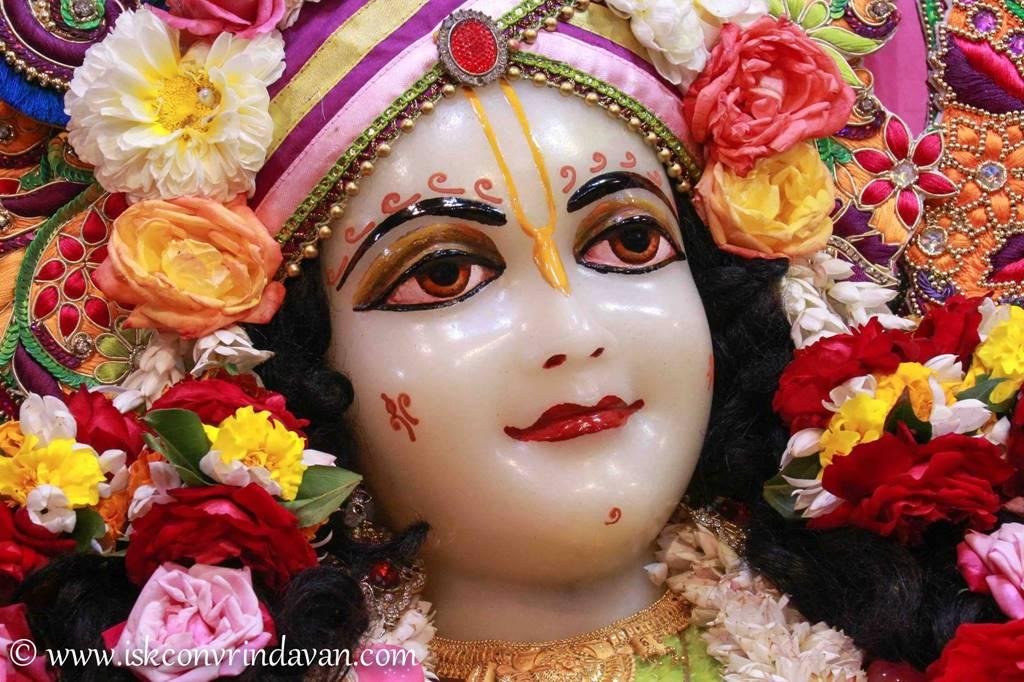 ISKCON Vrindavan Sringar Deity Darshan 14 Jan 2016 (13)