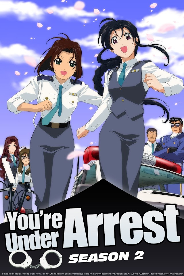 You're Under Arrest: Fast and Furious