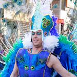 CarnavaldeNavalmoral2015_307.jpg