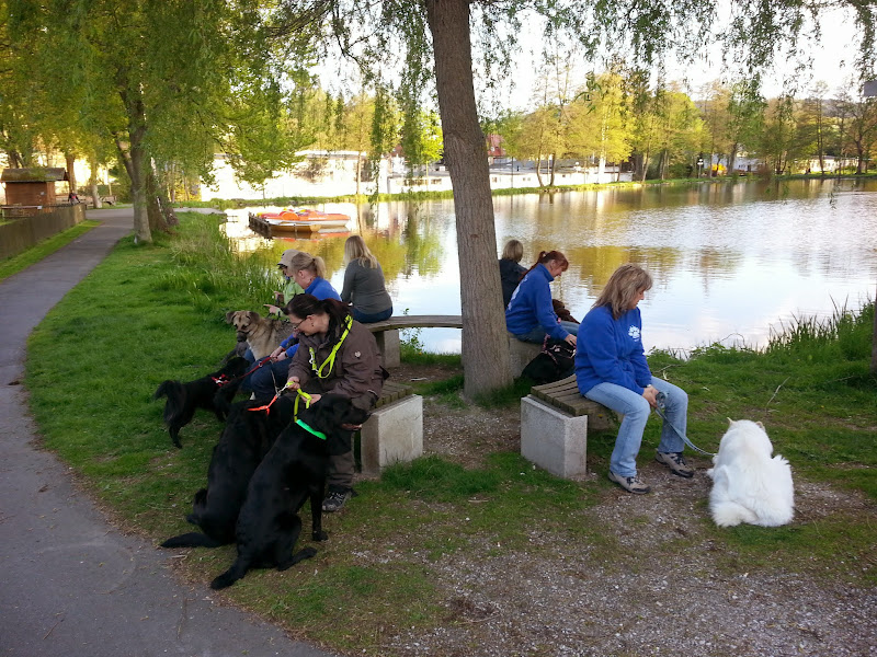20130514 Erlebnisgruppe Di Wunsiedel - 2013-05-14%2B19.40.42.jpg