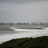 _DSC7262.thumb.jpg
